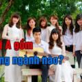 khoi-A-gom-nhung-nganh-nao-1